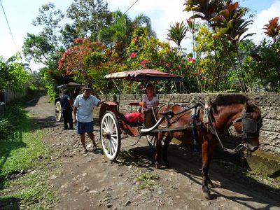 Karrentocht in Java, Kalibaru