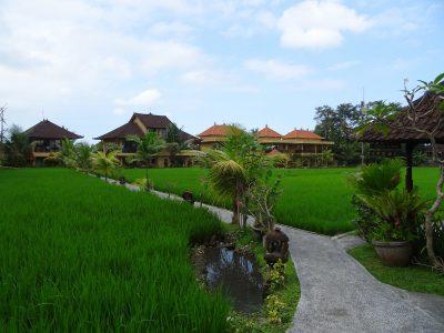 Kindvriendelijk hotel in Ubud