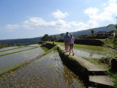 Lopen door de rijstvelden van Munduk met de kinderen