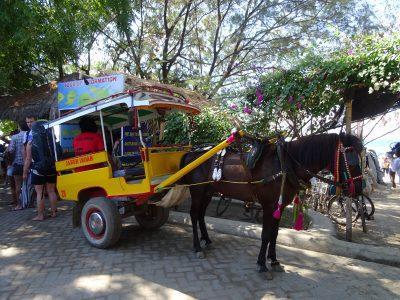 Met paard en wagen op de Gili's