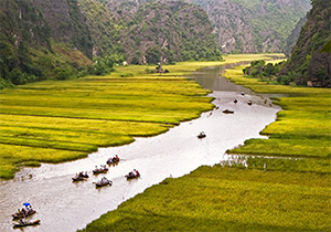 Roeibootjes varen door Tam Coc bij Ninh Binh