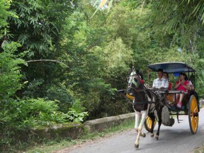 Laat je vervoeren door paard en wagen bij de Borobudur op Java Indonesie